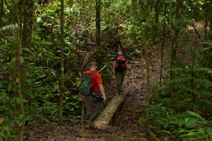 Mike and Aaron cross a ravine on one of many plank bridges.