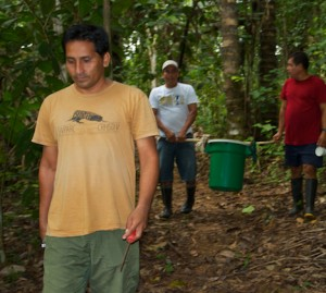 Our guides carry the Bushmaster in a plastic tub.